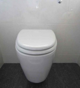 Concealed Wc Installation